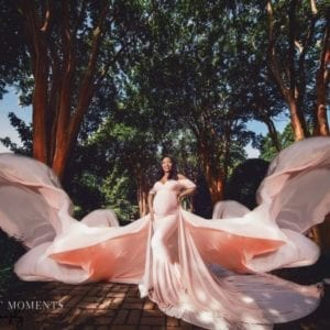 Butterfly Maternity Gown